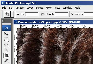 chromiraprep-05-file-info-bar-ok